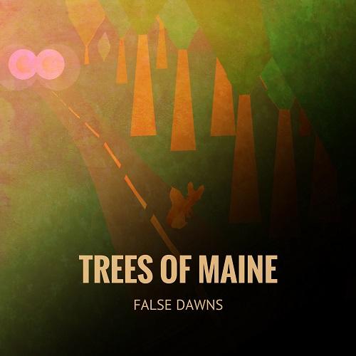 """Valdet Luboteni (The Orange Strips) predstavio solo album """"False Dawns"""" pod imenom Trees Of Maine"""