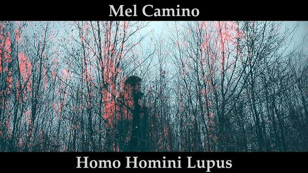 Mel Camino Homo homini lupus