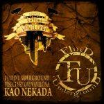 Poslušajte zajednički singl Fluid Undergrounda i Visećih Vrtova Vavilona
