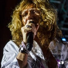 Whitesnake photo wallpaper