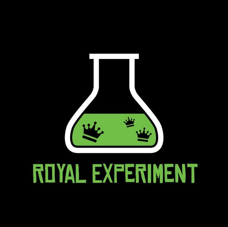 Royal Experiment – novi fusion pop bend na sceni