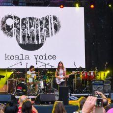 Koala Voice INmusic festival Zagreb