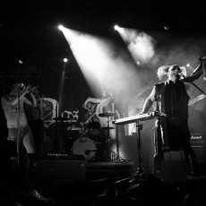 Das Ich Exit festival Novi Sad