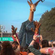 Macklemore Sziget festival Budimpešta