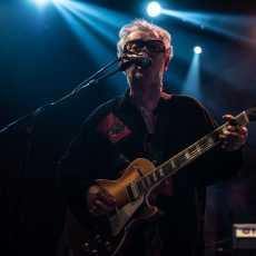 Bob Geldof Nišville Niš
