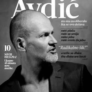 Damir Avdić - Radikalno šik