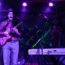 Drvotruo Tingo Fest Zemun Beograd galerija slike fotografije