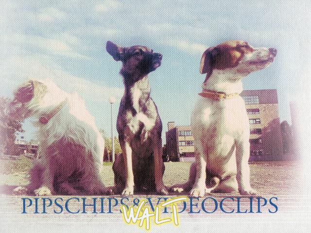 Pips, Chips & Videoclips -  Walt